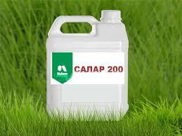 Салар 200