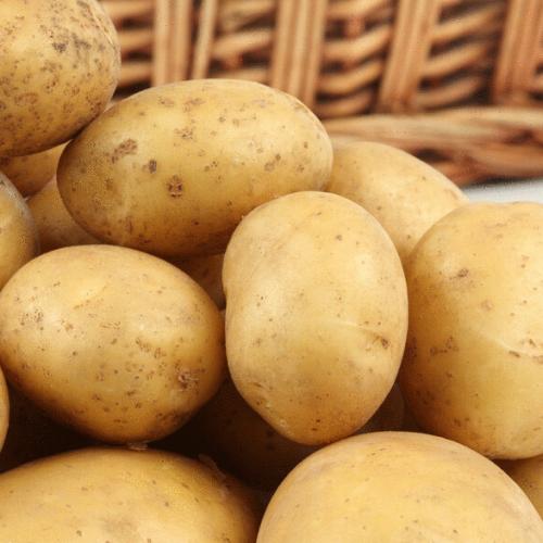 """Семенной картофель """"Саванна """" Голландия   ( 1 репродукция)"""
