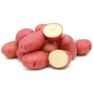 """Семенной картофель """"Рудольф"""" Голландия (Первая репродукция)"""