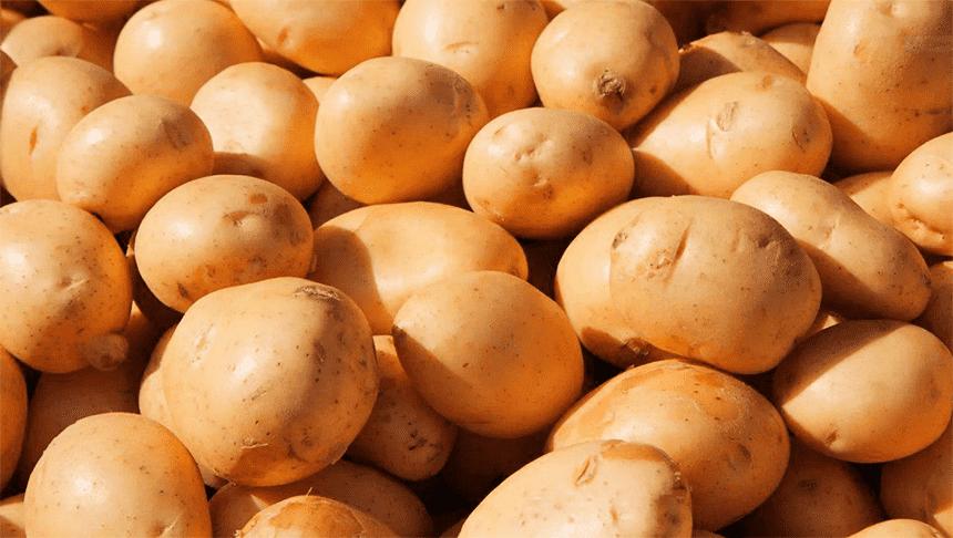 голландский картофель